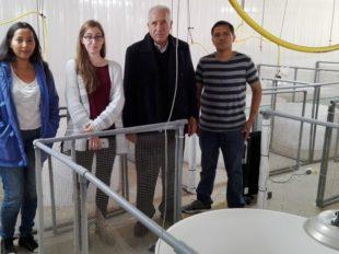 UCSUR's Experimental poultry farm