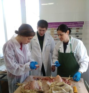 A technical and commercial team from Biovet visits Ukraine