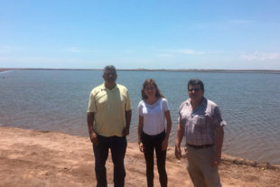 A technical-commercial team from Biovet visits a shrimp farm (Penaeus Vannamei)in Mexico in July