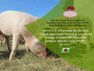 Biovet S.A. will present a poster about a natural preservative at the Allen D. Leman Swine Conference