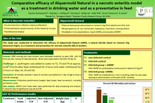 Compared efficacy of Alquermold Natural in a necrotic enteritis model