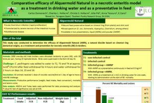 Eficacia comparada de Alquermold Natural en un modelo de enteritis necrótica