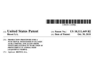 Alquernat Nebsui patent, granted in the USA