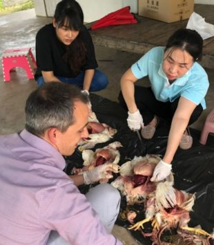 Technical visits in poultry companies in Thailand