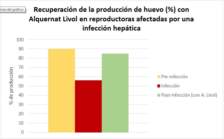 Recuperacion de la producción del huevo con Alquernat Livol
