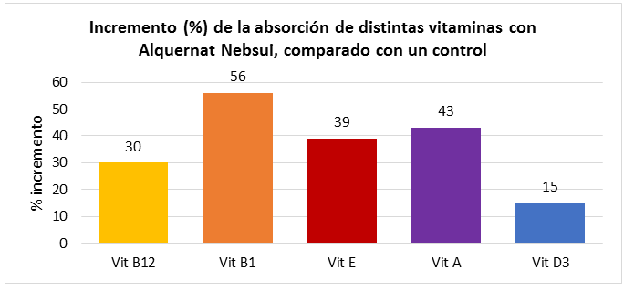 Incremento absorcion vitaminas con Alquernat Nebsui