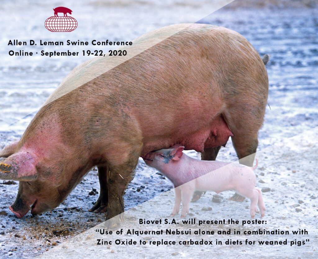 Alquernat Nebsui to control post-weaning diarrhea, poster at the Allen D. Leman Swine Conference