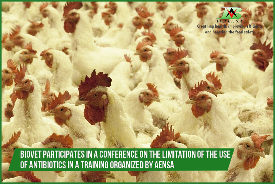 Biovet participates in a conference on the limitation of the use of antibiotics in a training organized by AENSA
