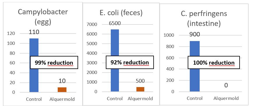 . Alquermold Natural reduces the presence of Campylobacter, E. coli and C. perfringens