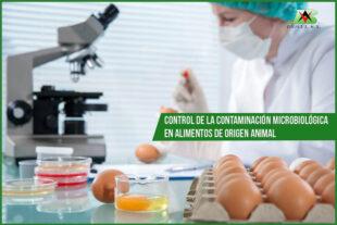 Alquermold natural para el control de la contaminación microbiológica en alimentos de origen animal