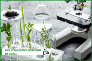 Global Vet's Lab, technical support service now available!