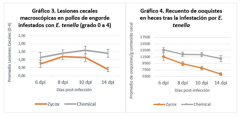 Mecanismos de control naturales mediante los pronutrientes optimizadores intestinales para la coccidiosis aviar