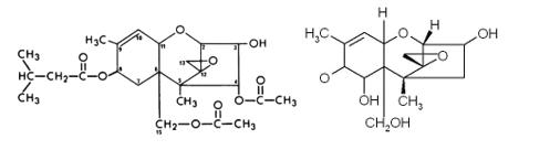 Estructura química del deoxinivalenol y de la micotoxina T-2