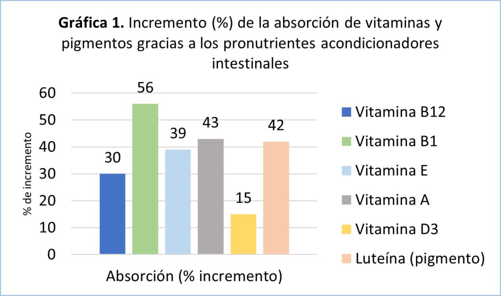 Incremento de la asborción de vitaminas gracias a los pronutrientes