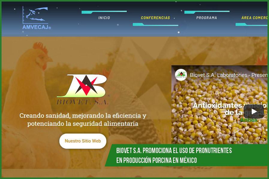 Biovet S.A. promociona el uso de pronutrientes en producción porcina en México 2