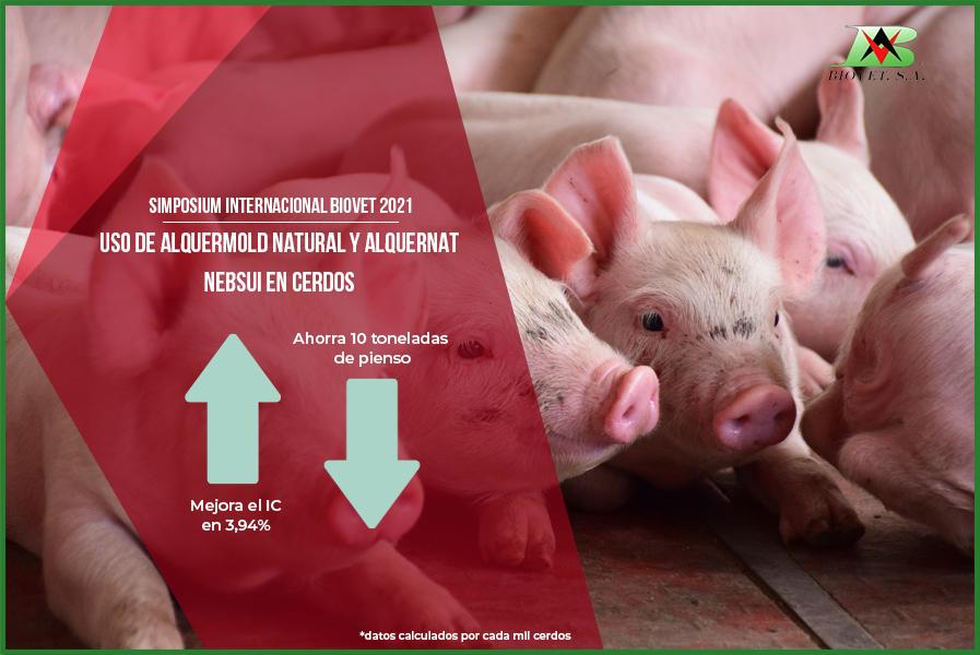 Captadores de micotoxinas y pronutrientes en producción porcina protagonistas en el Simposium Internacional Biovet 2021