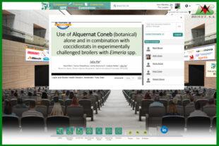 Biovet presenta Alquernat Coneb en el North Central Avian Disease Conference