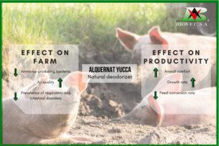 Reduction of environmental ammonia to improve productivity on farms
