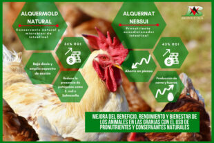 Mejora del beneficio, rendimiento y bienestar de los animales en las granjas con el uso de pronutrientes y conservantes naturales