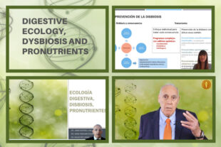 Digestive ecology, dysbiosis and pronutrients