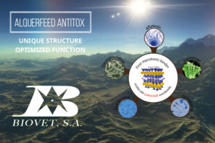 Alquerfeed Antitox: unique structure, optimized function
