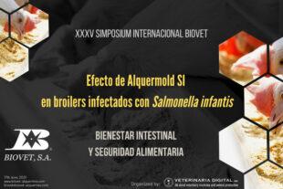 Efecto de Alquermold SI en broilers infectados con Salmonella infantis