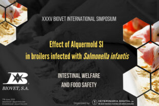 Effect of Alquermold SI in broilers infected with Salmonella infantis