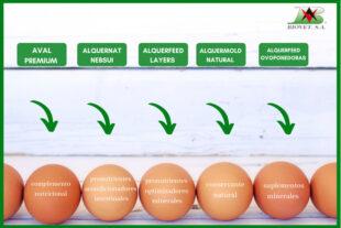 Línea OVUM: soluciones naturales para ponedoras