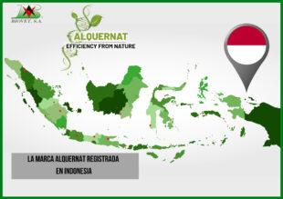 La marca Alquernat registrada en Indonesia